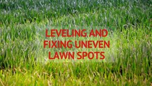 Leveling and Fixing Uneven Spots in Your Lawn