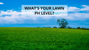 What's Your Lawn pH Level?