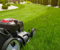 The 5 Benefits of Cutting Your Lawn at 3 Inches